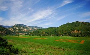 """发展景观农业,强化基础建设           1.实施《北京市农业基础建设和综合开发规划》。过去的四年,投资46.41亿元,着力打造120万亩优质产业田、优良生态田和优美景观田。以农田水利改善、农田培肥、田园清洁循环、农田景观建设四项工程为主要内容,今年二期工程启动。2.全力推进农业机械化。农业机械对都市型现代农业的主力军作用越来越突出。3.发展休闲观光农业,打造市民京郊后花园。观光农业加快发展。先期在怀柔、密云等启动7条沟域的设计与建设,已经形成了文化创意先导、特色产业主导、龙头景区带动、自然风光旅游、民俗文化展示等模式,成为全市山区经济发展的典范。典型如延庆的百里画廊、四季花海,密云的古北水镇,密云石城镇""""云梦花香""""等农田观光品牌。"""