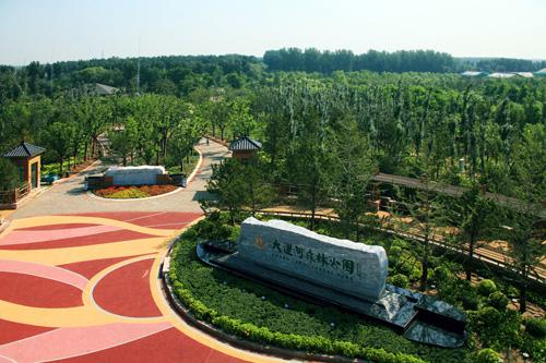 通州大运河(滨河)森林公园.图片由北京市园林绿化局提供图片