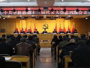 中共李桥镇第十三届代表大会第四次会议召开