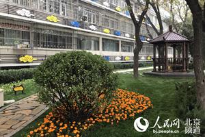 三里屯建成两个社区公共精品花园