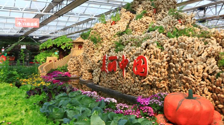 第六届北京农业嘉年华3月至5月举办