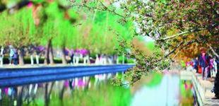 """海棠吐蕊绽放        位于元大都遗址""""海棠花溪""""景区内的海棠花吐蕊绽放,进入""""半开时节最妖娆""""的时光。"""