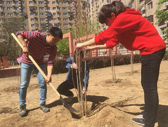 处处有景四季常青丰台东铁匠营街道携手在职党员打造精品花园社区