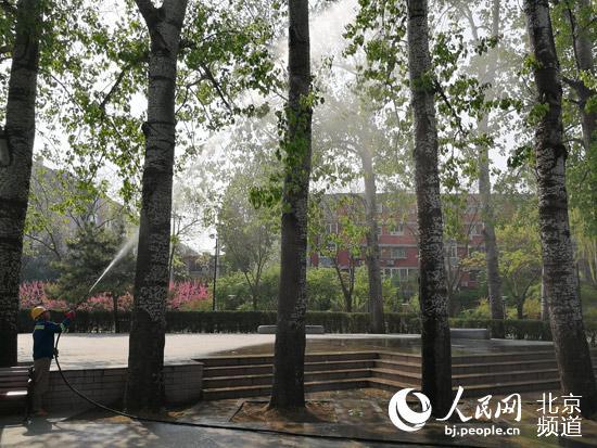 今年<a href=http://www.jingcsb.com/a/jinribeijing/ target=_blank class=infotextkey>北京</a>市将综合治理杨柳雌株30万株一砍了之要不得
