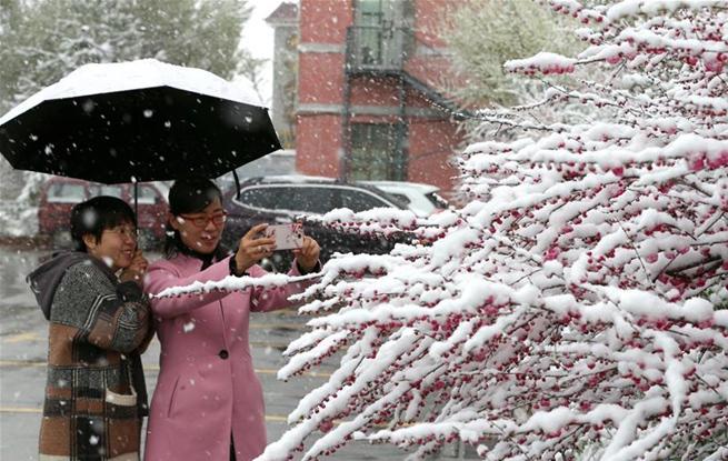 五月飞雪!新疆遭遇寒潮天气