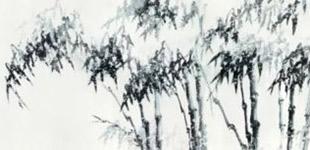 《清气留乾坤—柯良国画作品展》开展