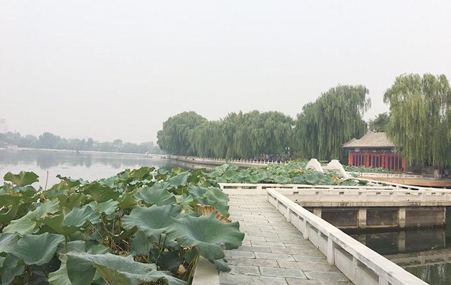 9月14日,记者在探访北京什刹海风景区环湖道路提升改造情况时了解到