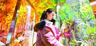 北京科学中心儿童乐园试运营