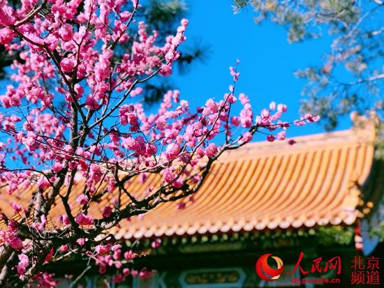 http://www.ysj98.com/caijing/599581.html