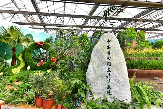 北京农业嘉年华:让农业文化遗产活起来