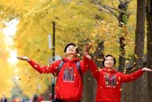 圓明園銀杏大道進入最佳觀賞期 近日,京城迎來銀杏最佳觀賞期,圓明園緩掃落葉,為游客展現千米銀杏大道的金黃秋色。除了銀杏外,園內還有白蠟、元寶楓、黃櫨等觀賞性較強彩葉樹種�!驹敿殹�