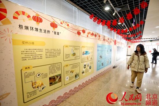 北京动物园鼠年生肖文化活动开幕首推限量款鼠年生肖纪念联票