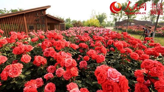 http://www.bjgjt.com/beijingfangchan/172810.html
