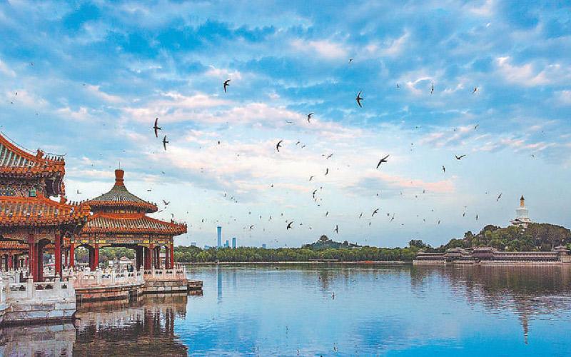 COP15大��北京展�^上�(xian) 北京成(cheng)生物多(duo)��(yang)性最(zui)�S富大都ji)兄 /><span>COP15大��北京展�^上�(xian) 北京成(cheng)生物多(duo)��(yang)性最(zui)�S富大都ji)兄 /span></a></div></div>  <div class=